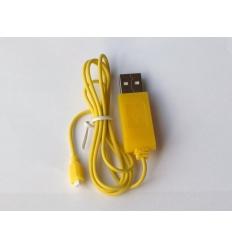 Cable de chargement R100G