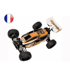 T2M Pirate Stinger Brushless