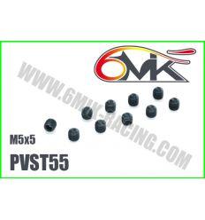 Vis Acier sans-tête M5x5 (x10)